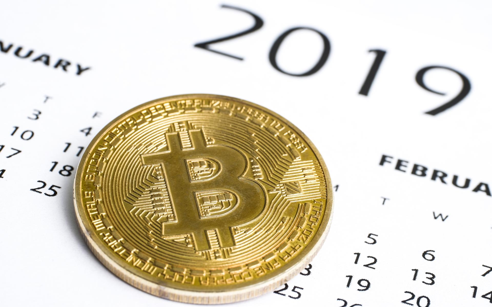 new year 2019 bitcoin icos crypto bull